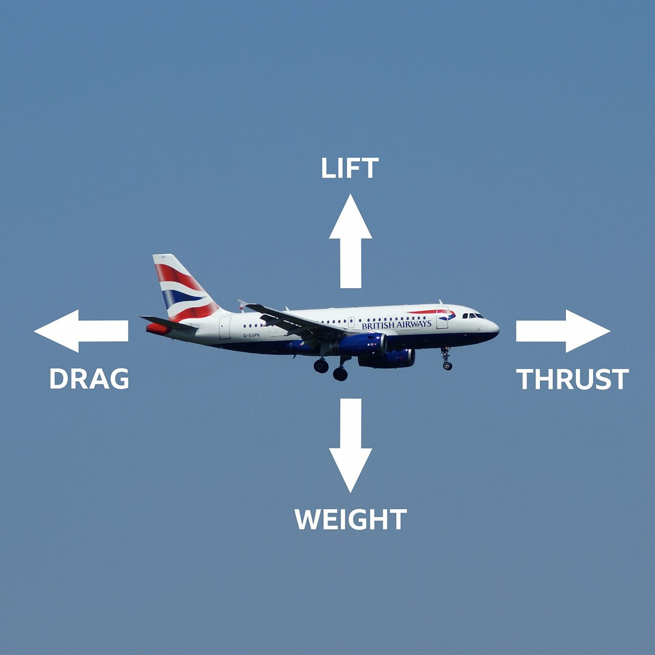 The four forces of flight