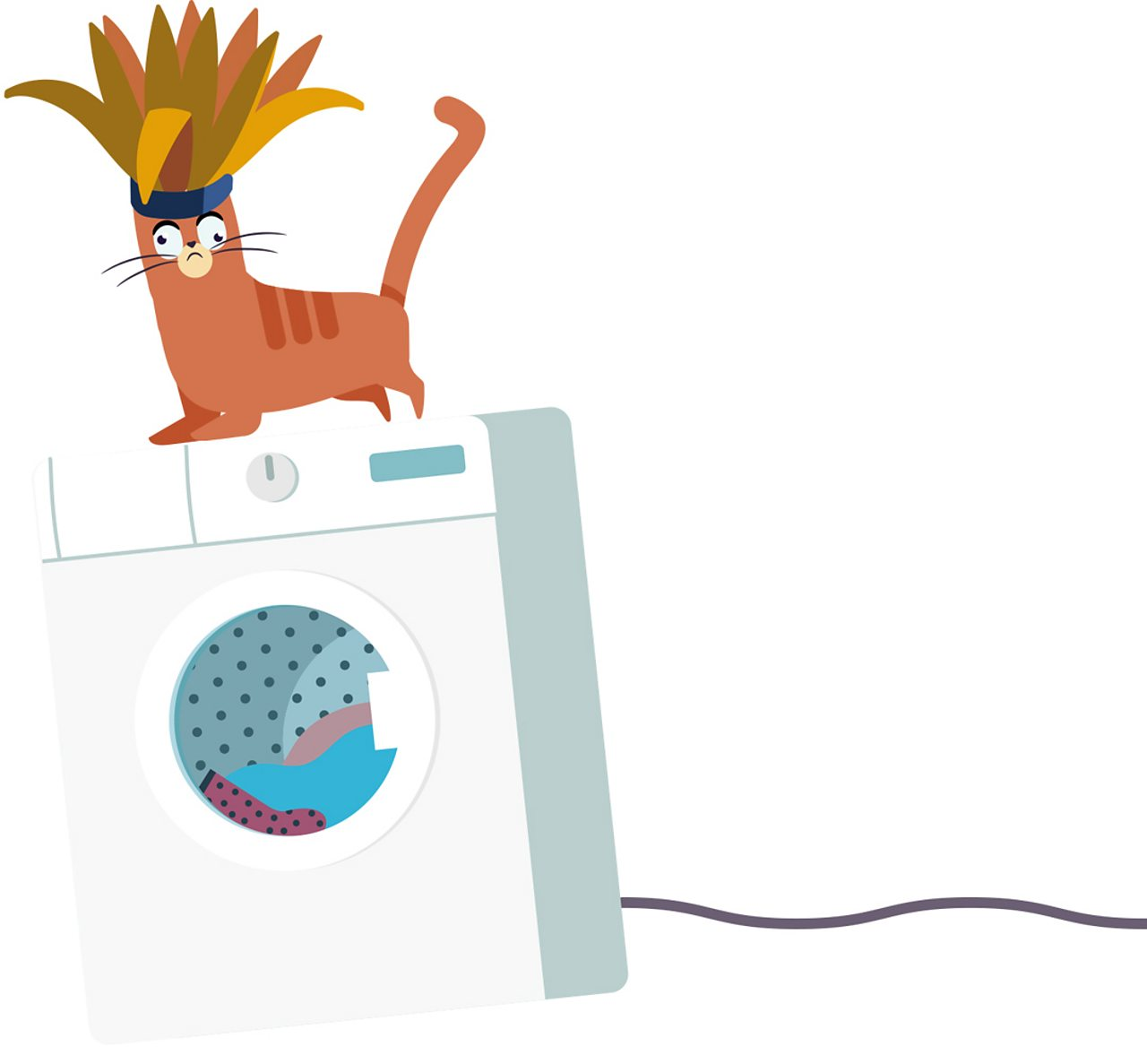 Chippy the cat wearing a carnival headdress on top of a washing machine