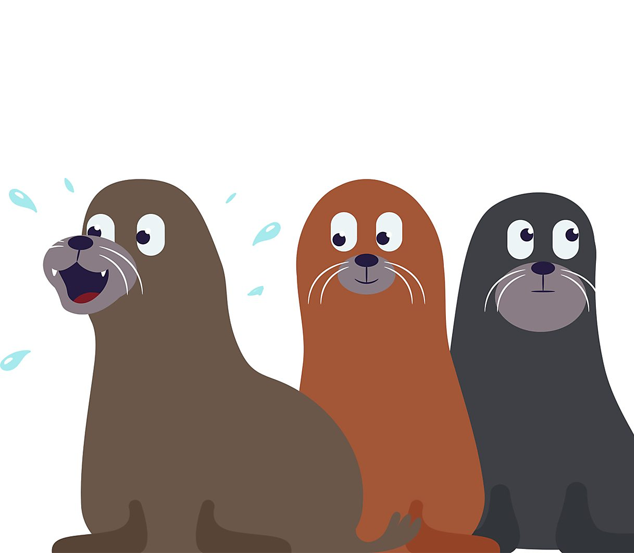 three sealions. one looks excited, one looks interested and one looks distracted.