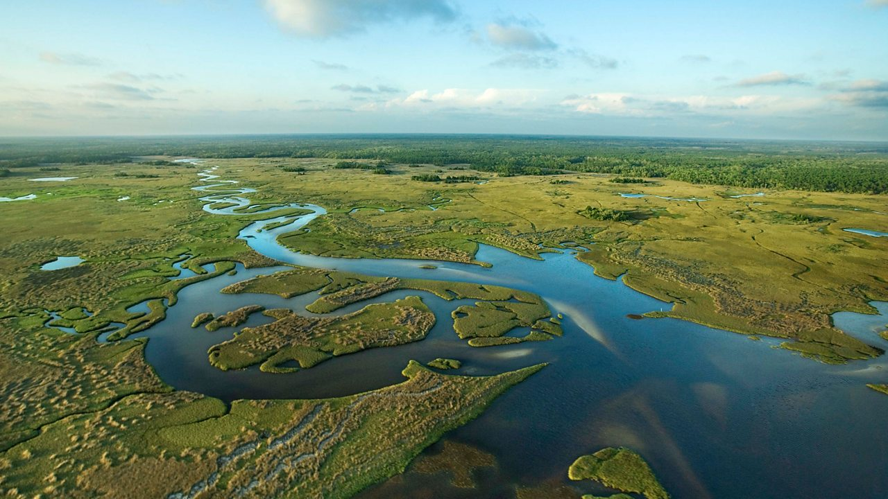The Everglades is a very wet and marshy national park in South Florida.