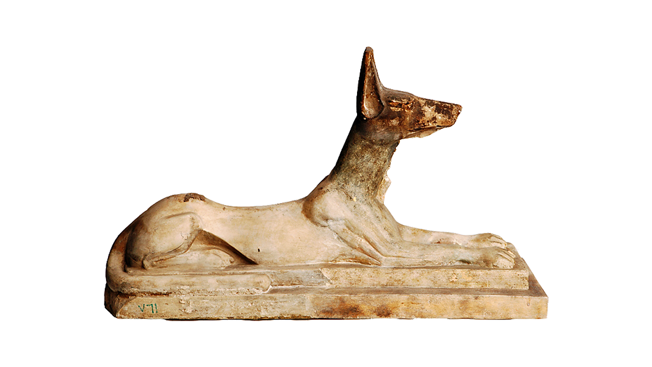 Anubis was associated with mummification and the afterlife.