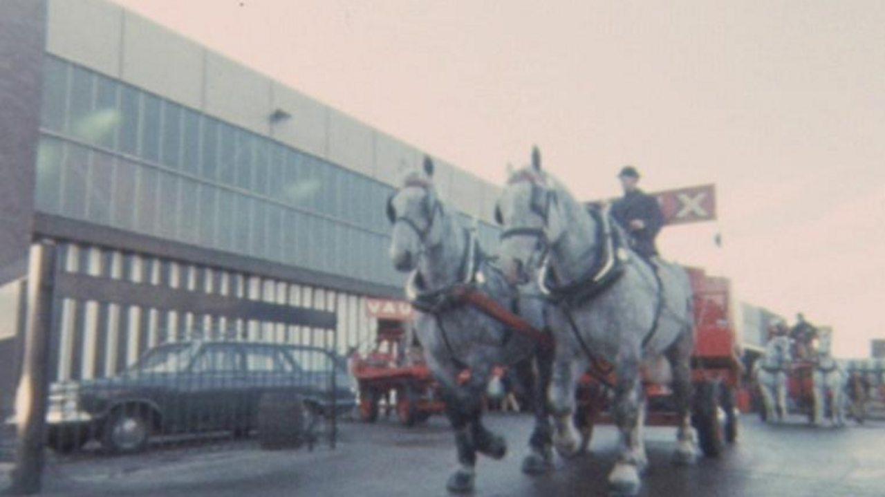 Three-day week horses, 1974
