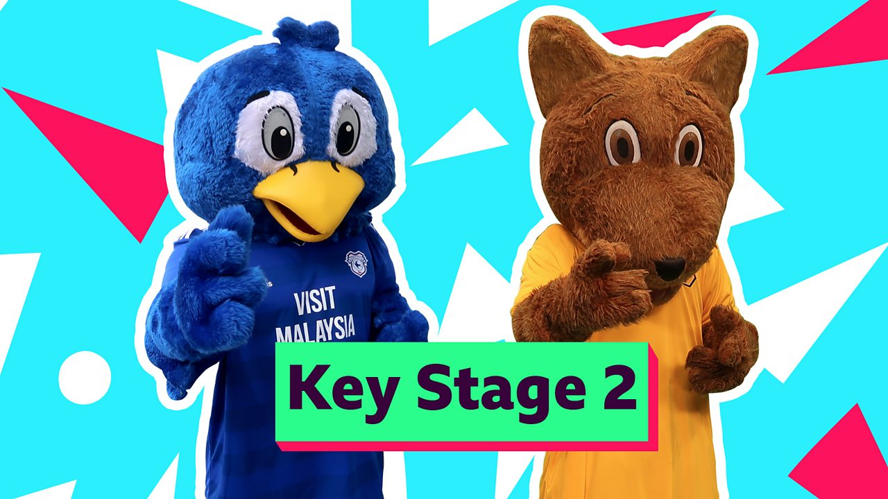 The Times Tables Mash-up with Bartley Bluebird & Wolfie Wolf