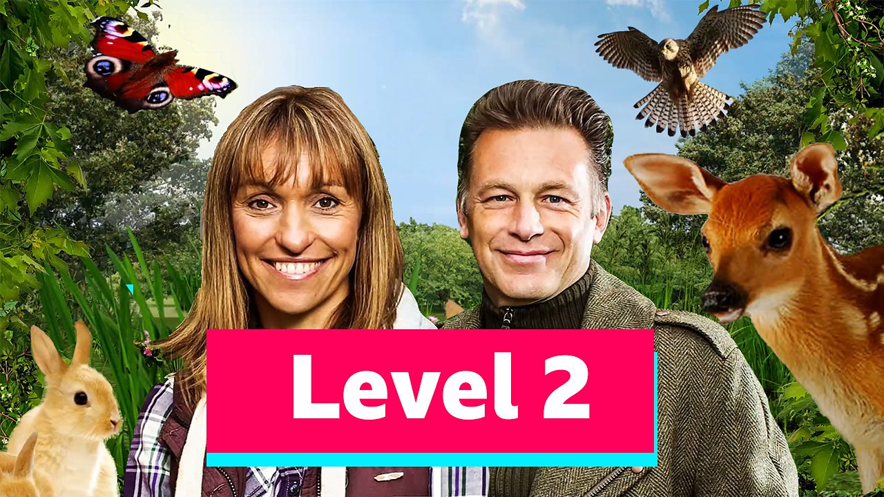 Just for Fun: Springwatch Level Two