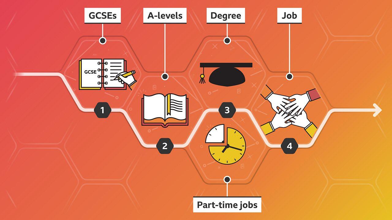 Aine's career path