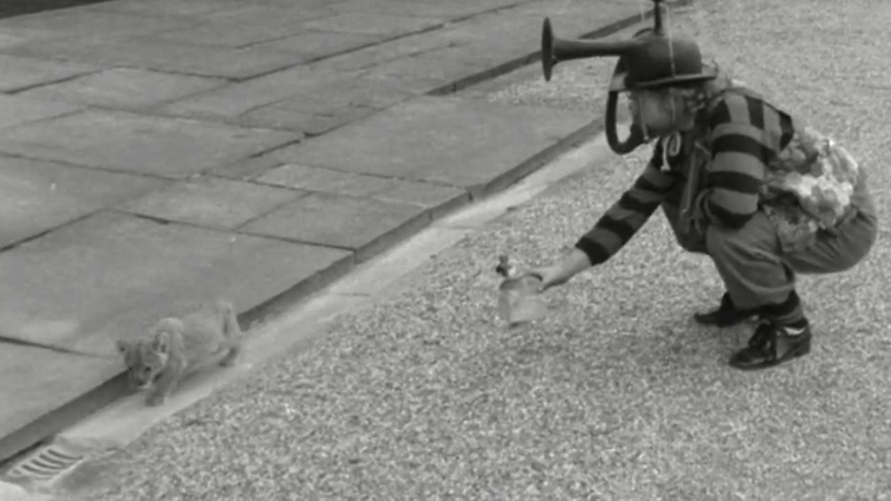 Wilf Lunn's protest bike, 1972