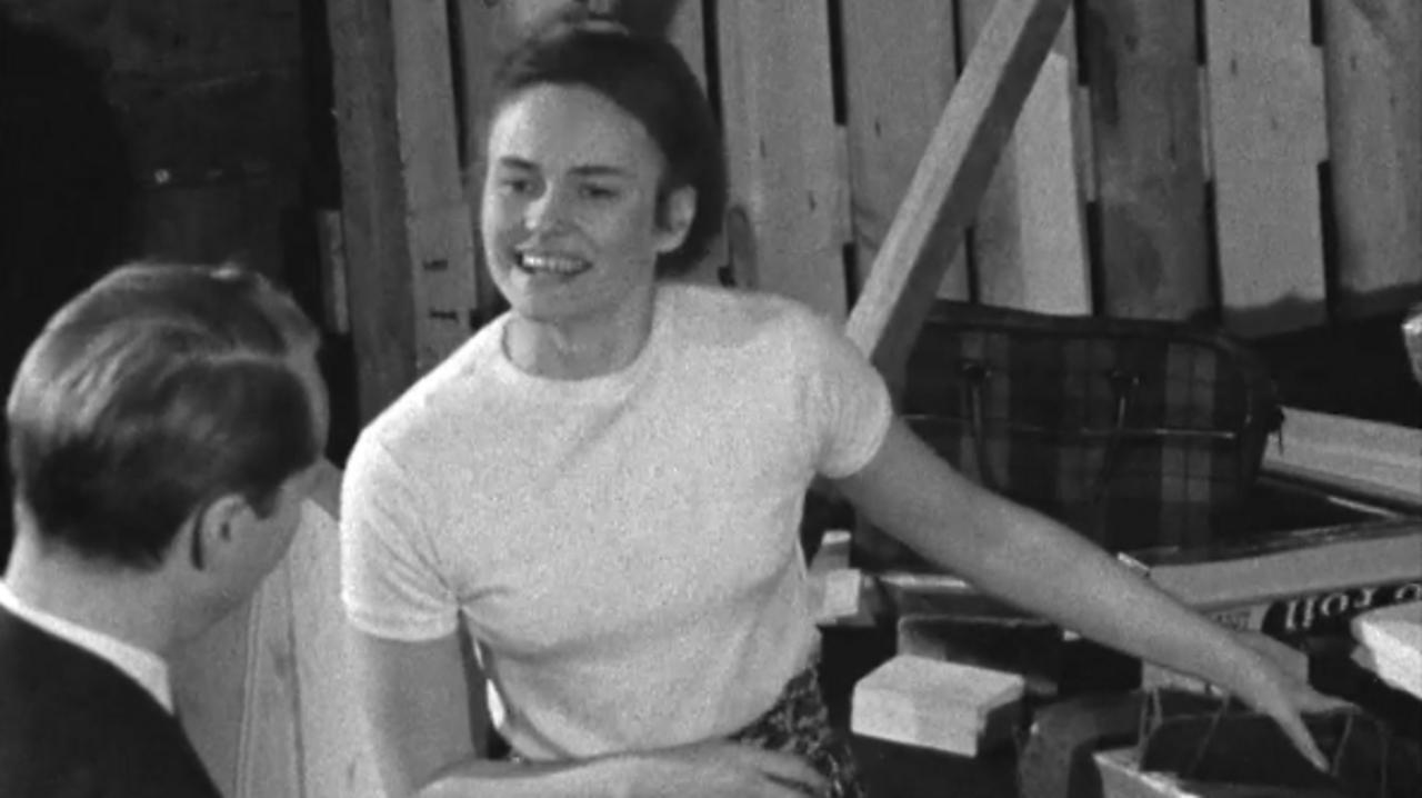 Annea Lockwood - musical glass breaker, 1966
