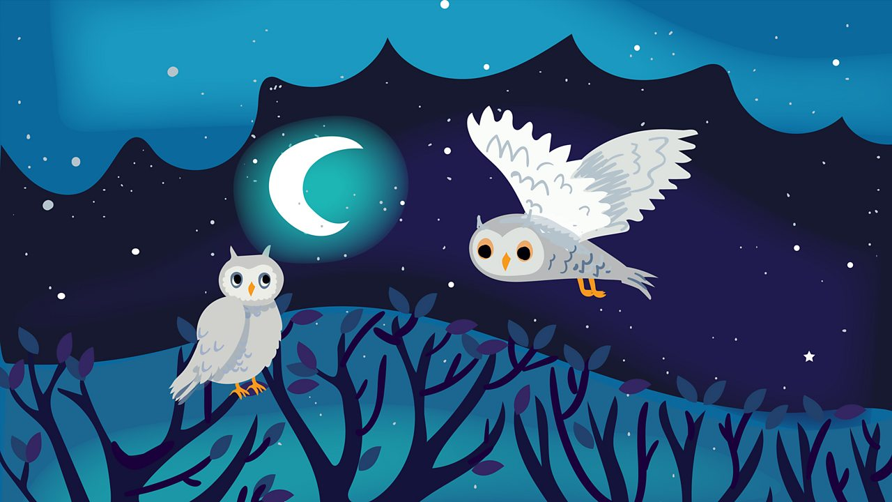 Calming Sounds - Birdsong