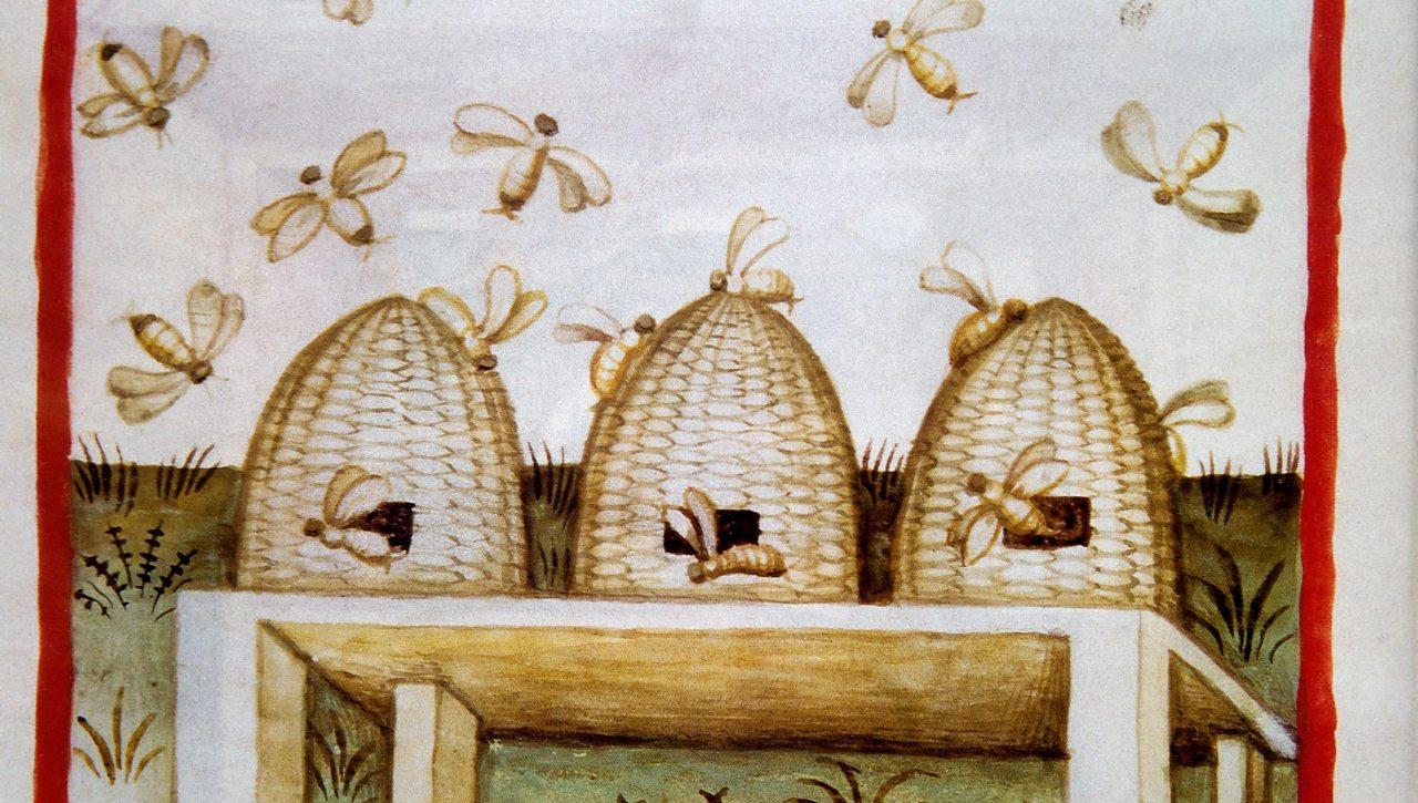 Tacuinum Sanitatis. 14th century. Medieval handbook of health. Honey. Folio 94v.