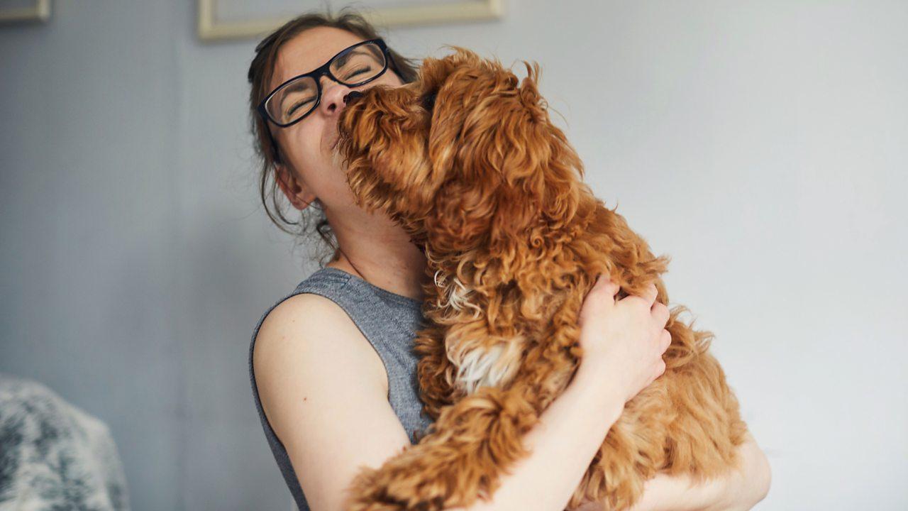 A dog loving its human.