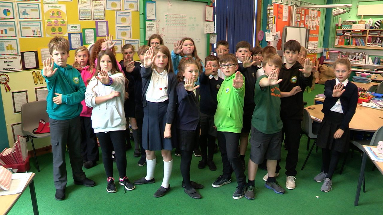 BBC Scotland - Stow Primary School's mission to become sustainable