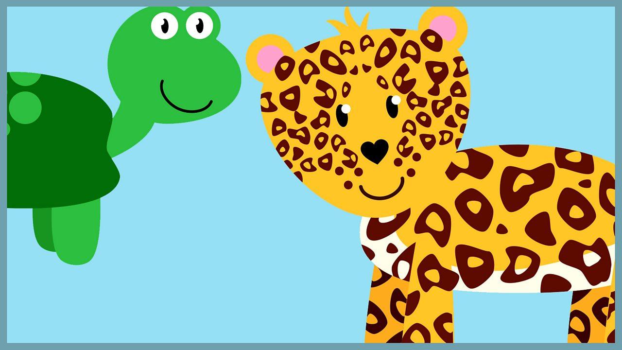 Loud leopards and terrific tortoises