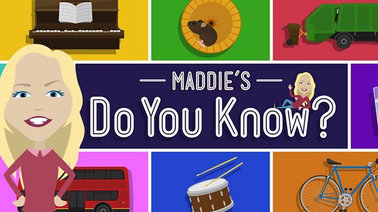 Explore with Maddie game