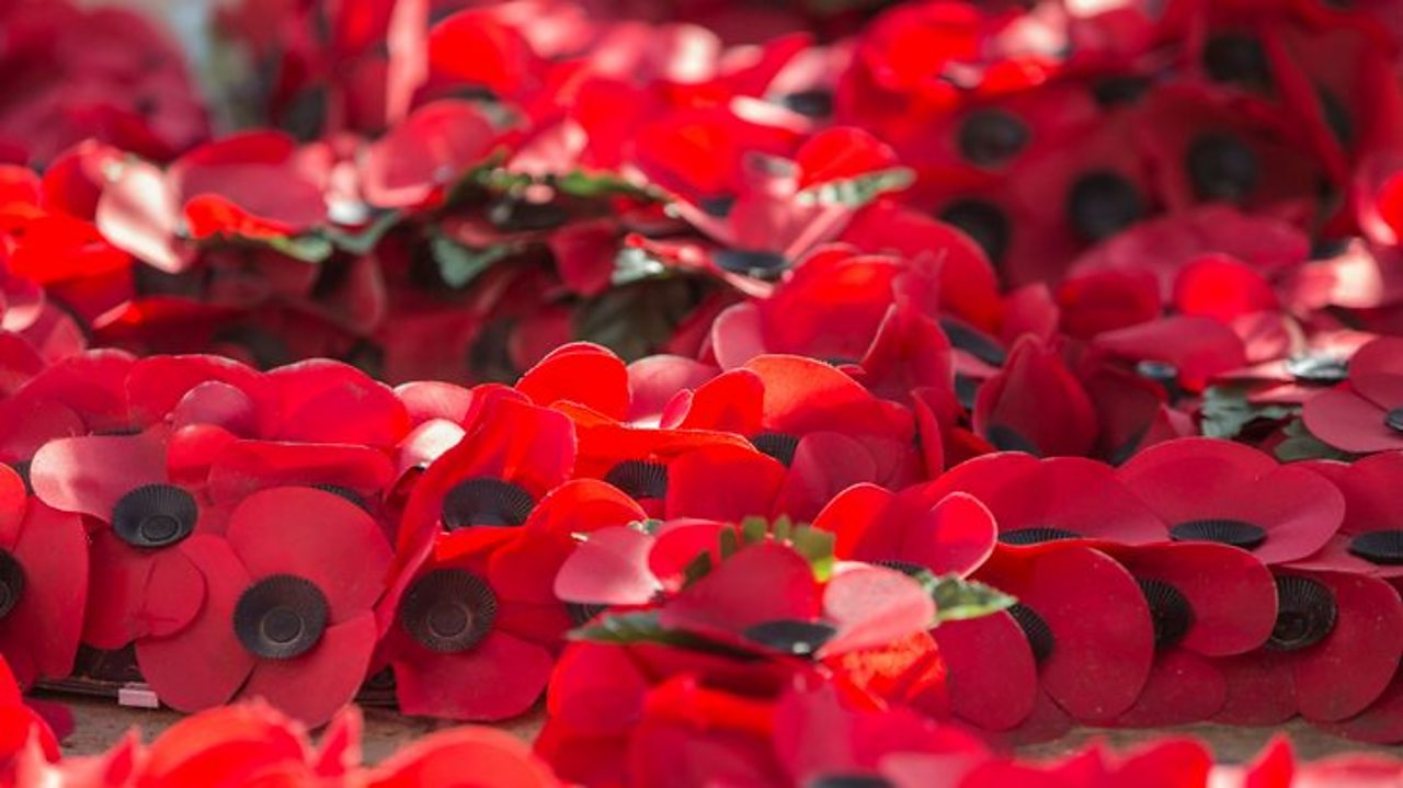 Quiz: Remembrance Day in numbers