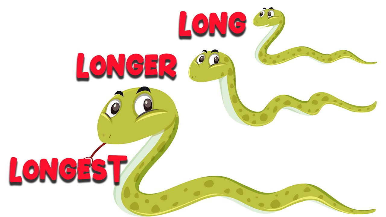 Three snakes of different lengths stacked one above the other labelled as long, longer and longest from top to bottom.