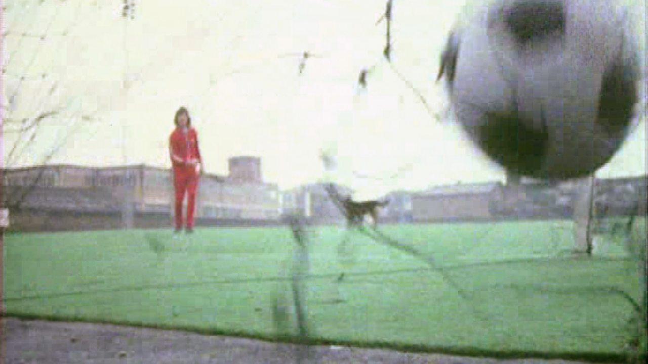 Plastic pitch, 1972