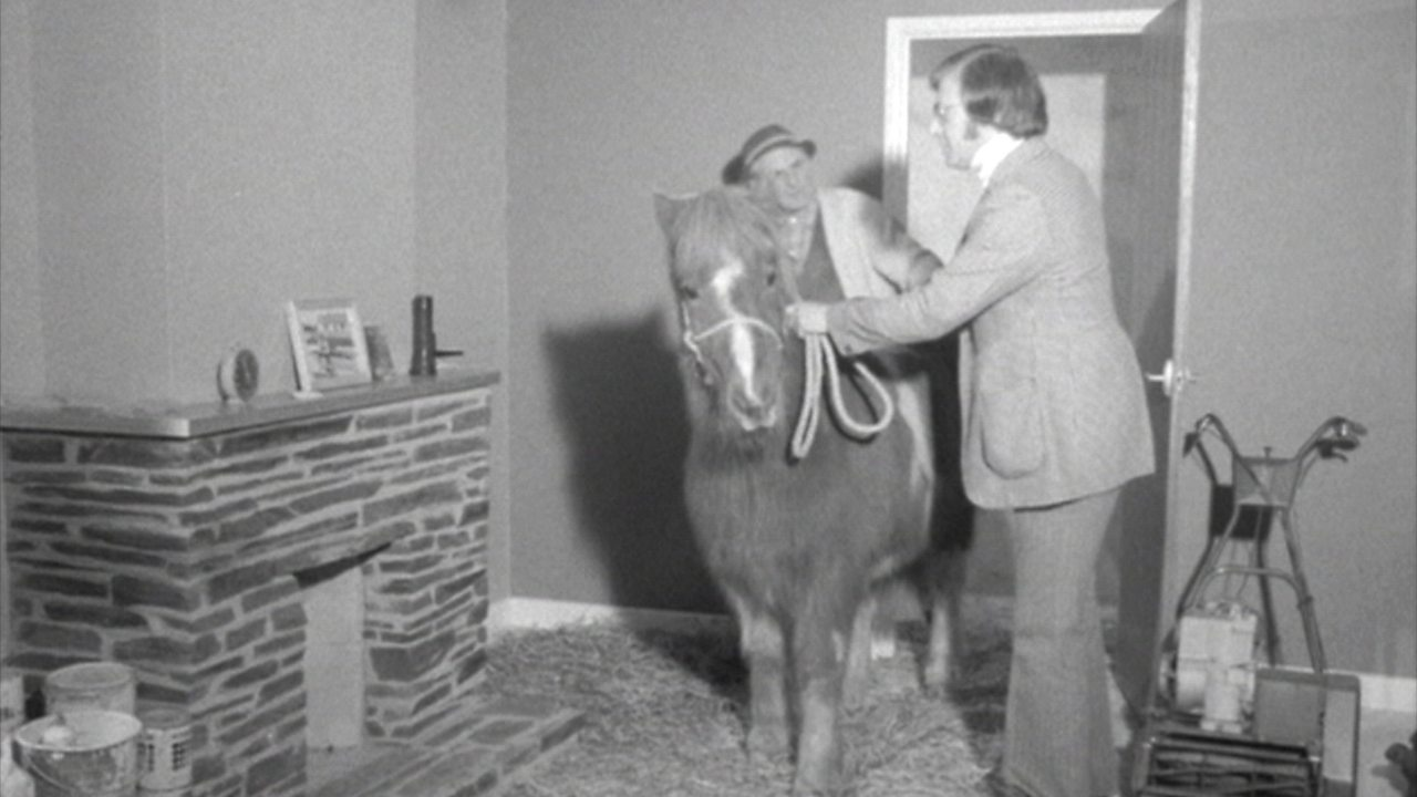 Noddy's stable, 1975