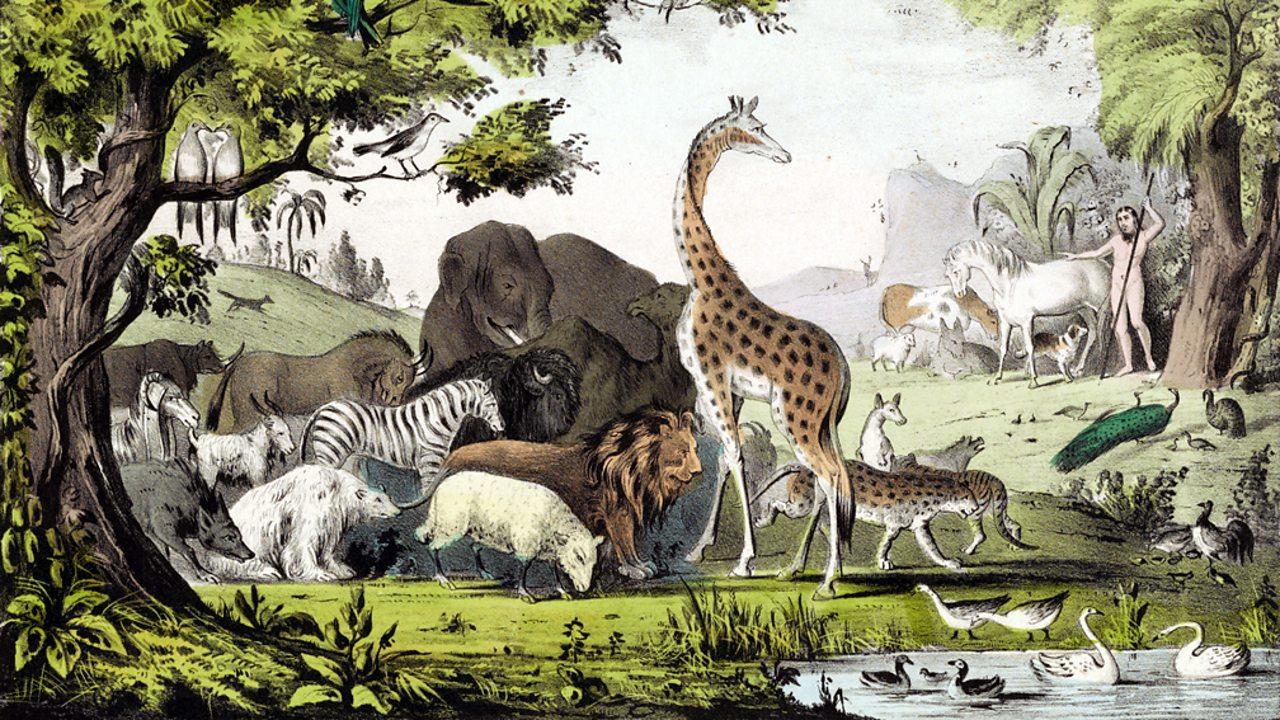 Judaism – Adam naming the animals in the Garden of Eden