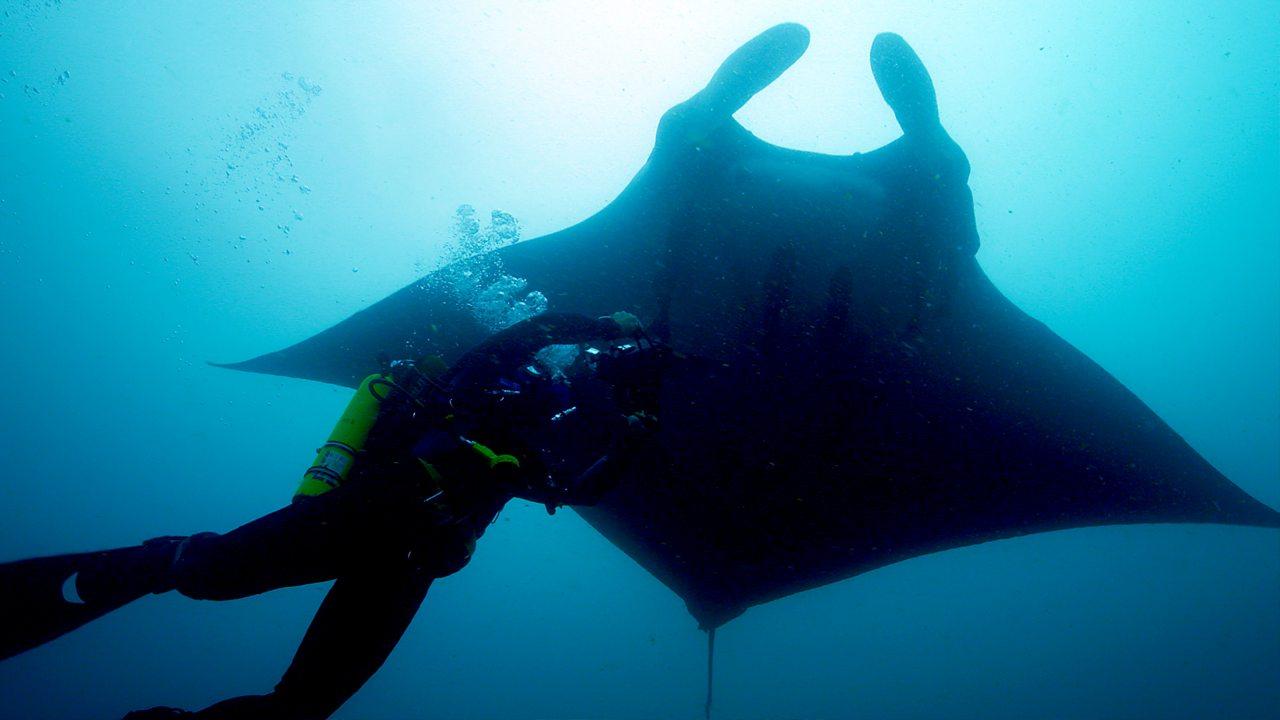 Deadly 60 - Ecuador Oceans