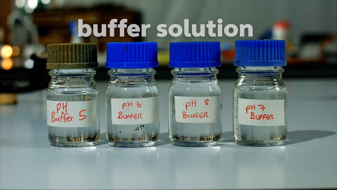 Investigate the effect of pH on enzyme activity