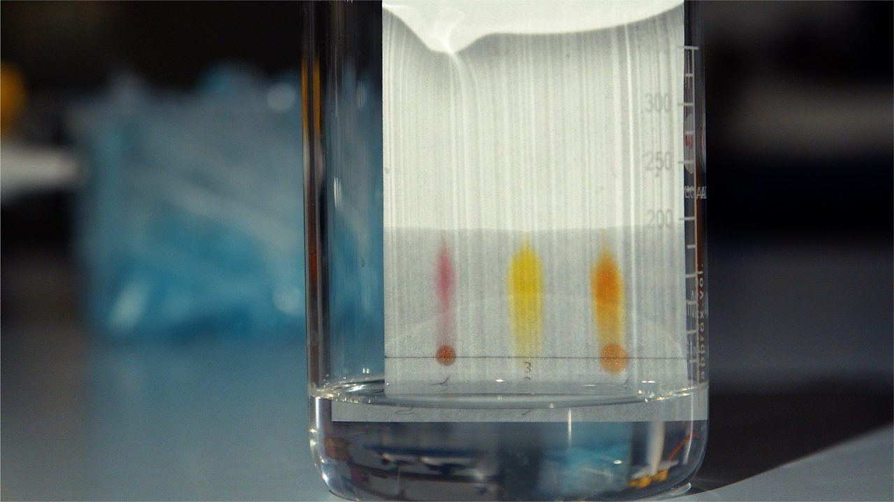 Investigate the separation of substances using paper chromatography