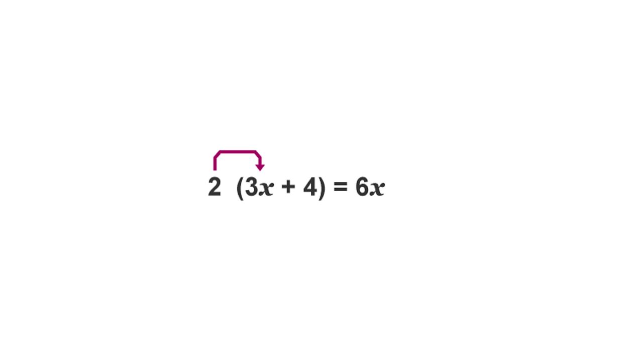 2 (3x + 4) = 6x