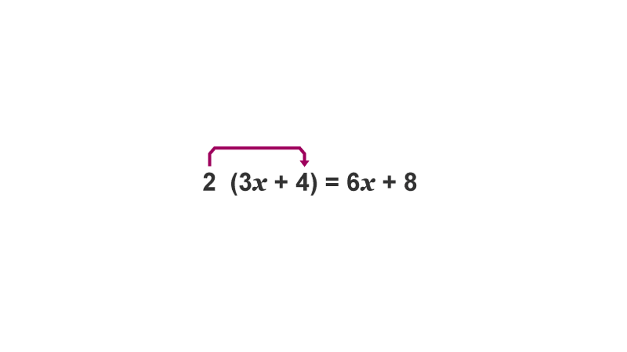 2 (3x + 4) = 6x + 8