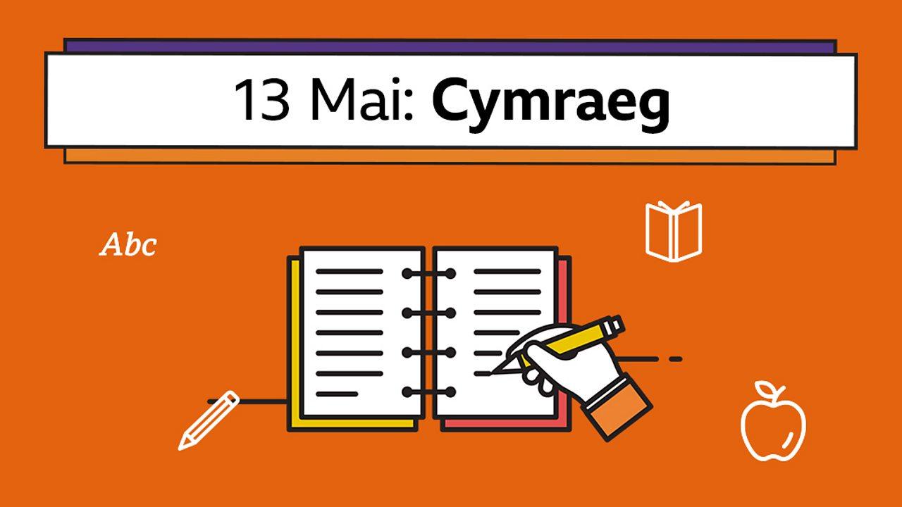 Creu dyddiadur - Ysgrifennu yn y dyddiadur (Writing in a diary)
