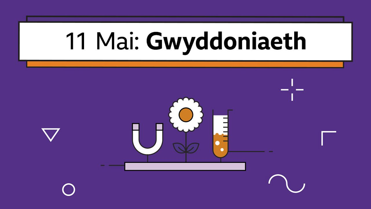 Beth yw cyddwyso? (What is condensation?)