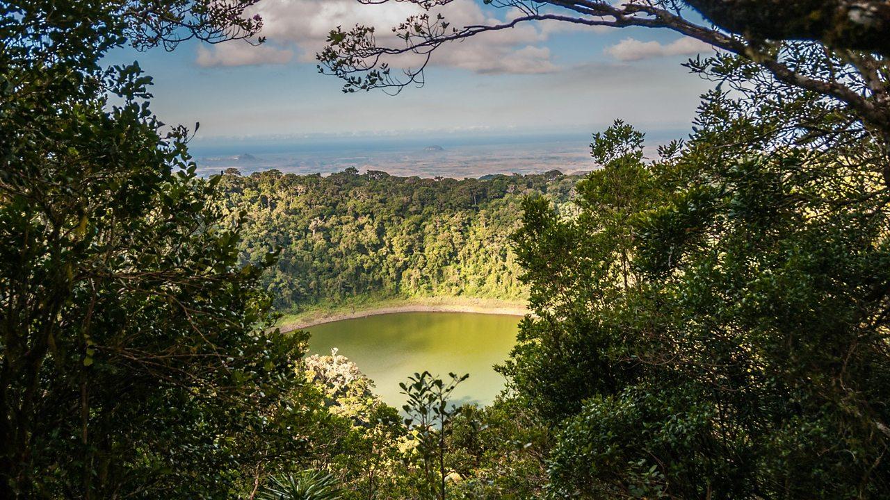 The Amber Mountain rainforest, Madagascar
