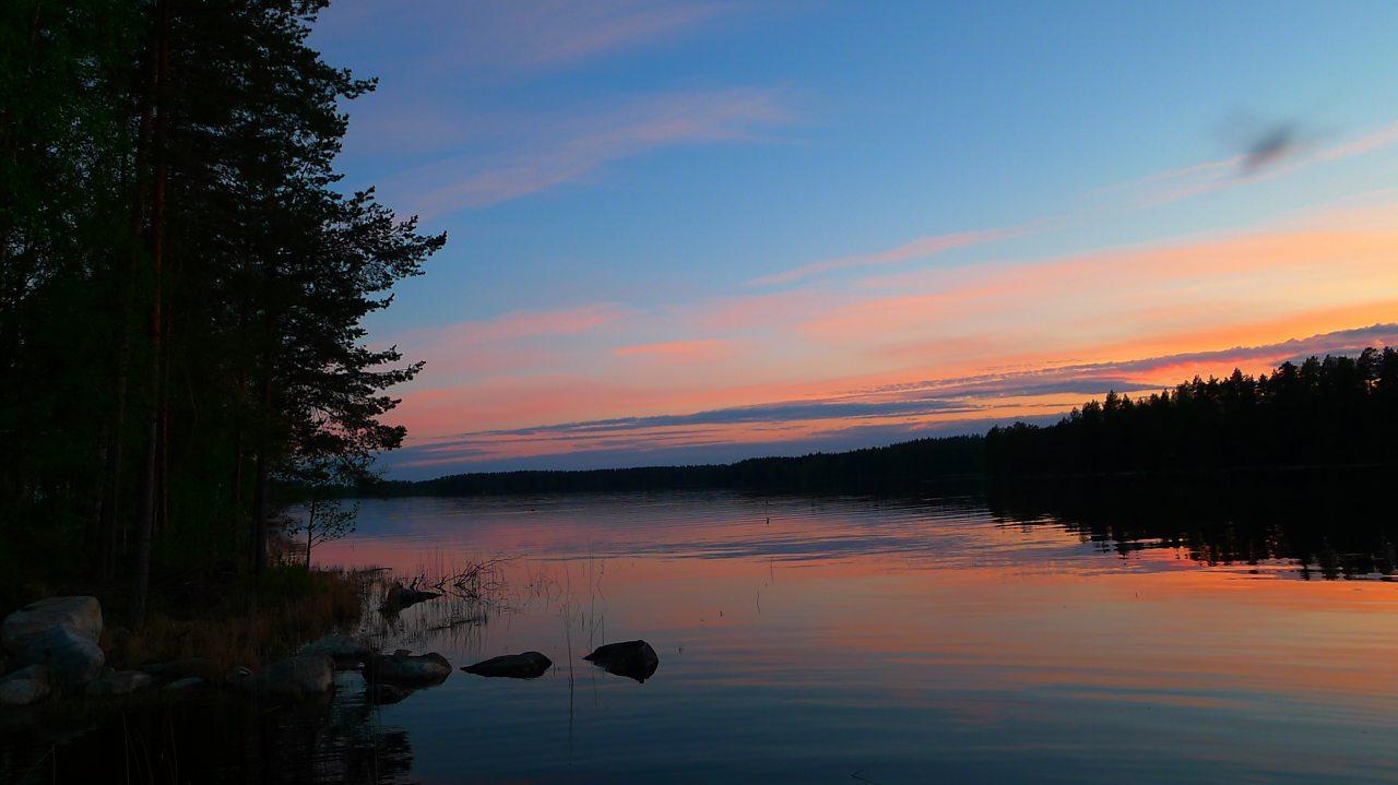 Lake Suvasvesi and the Taiga forest, Finland