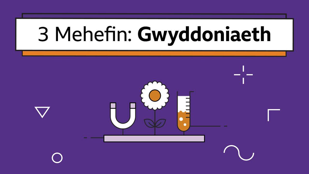 Sut mae solidau, hylifau a nwyon yn newid eu cyflwr (How solids, liquids and gases change their state)