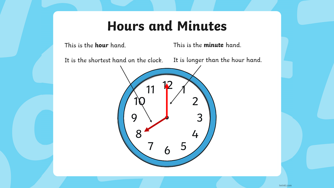 The hour and minute hands are identified on an analogue clock that tells it as 8 o'clock.