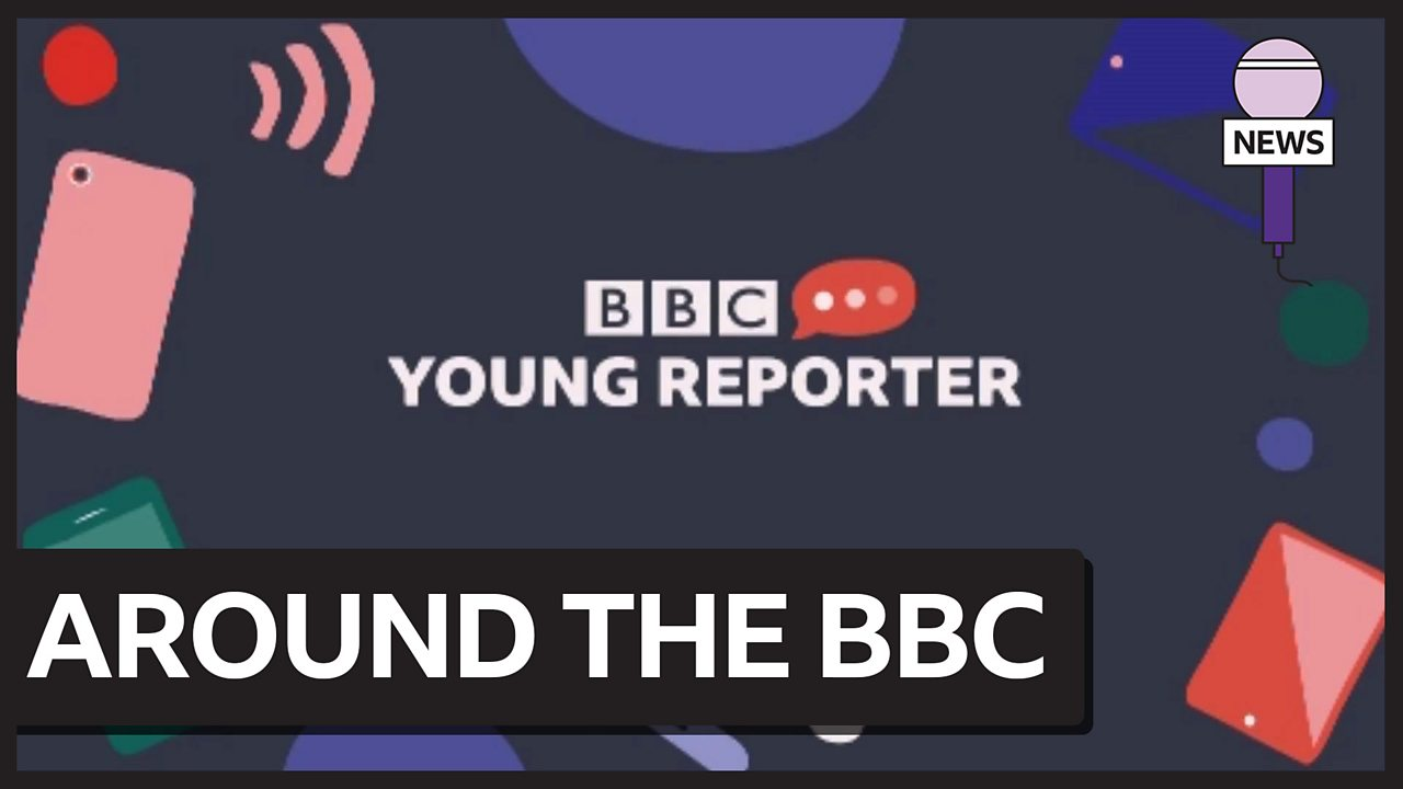 Fake news and BBC Young Reporter