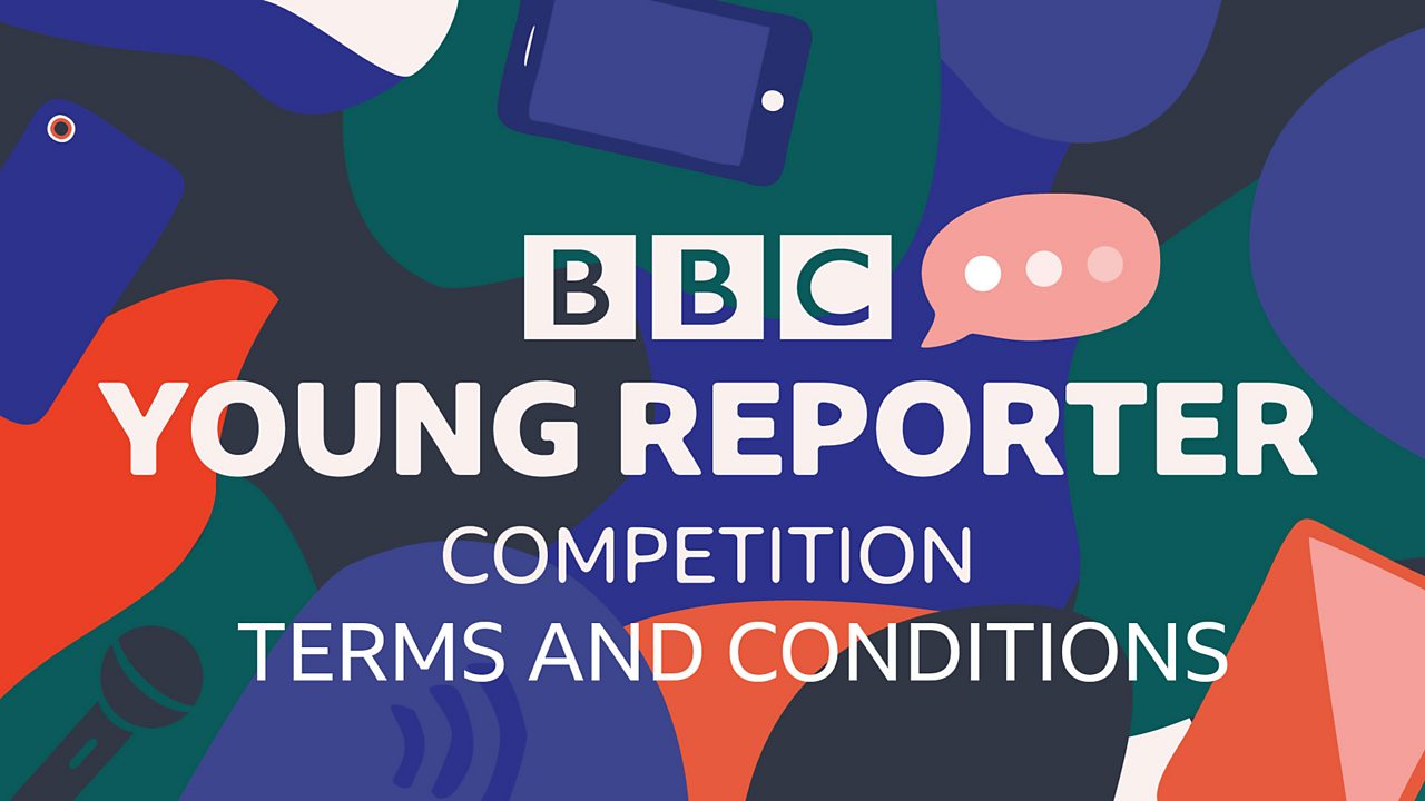 Young Reporter competition - terms and conditions