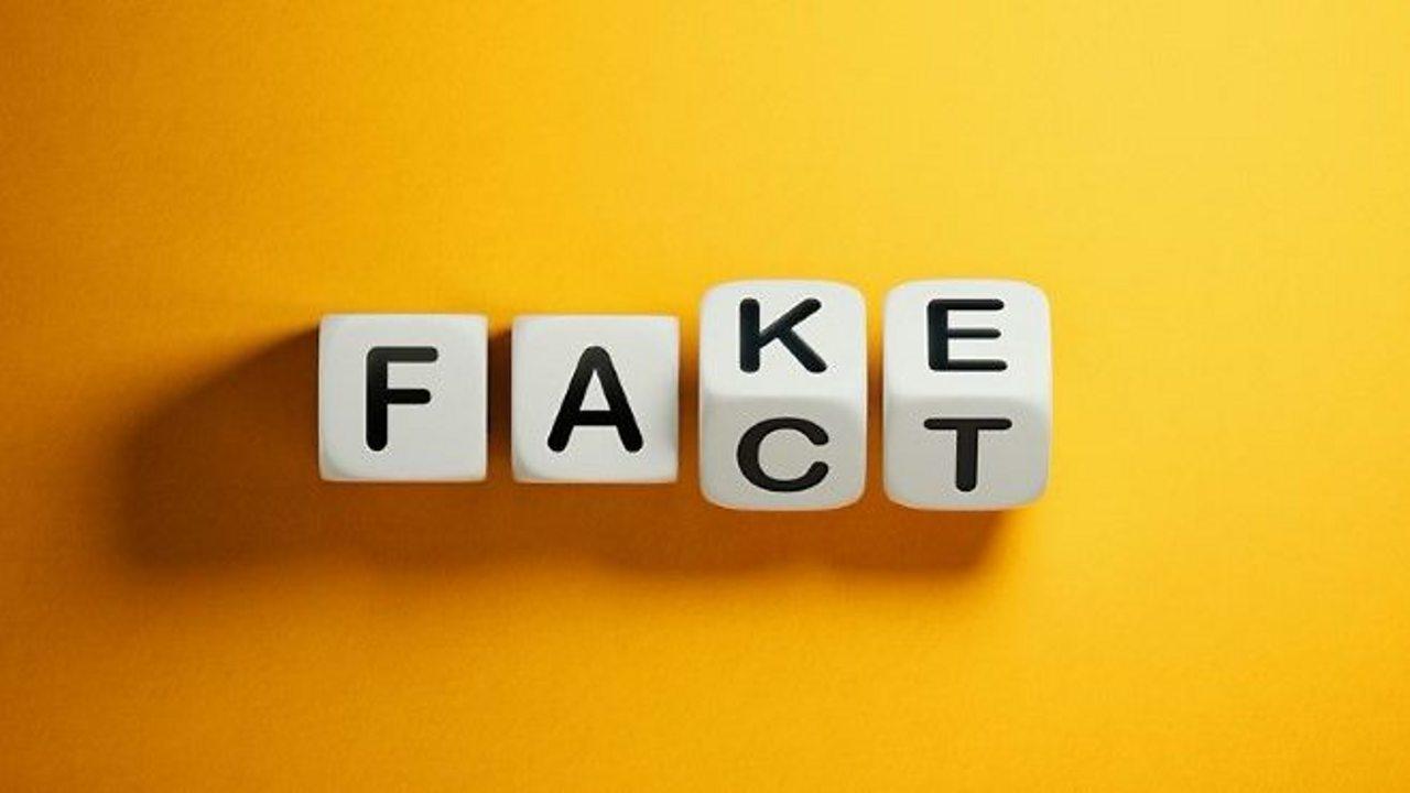 BBC Bitesize - Fact or Fake?