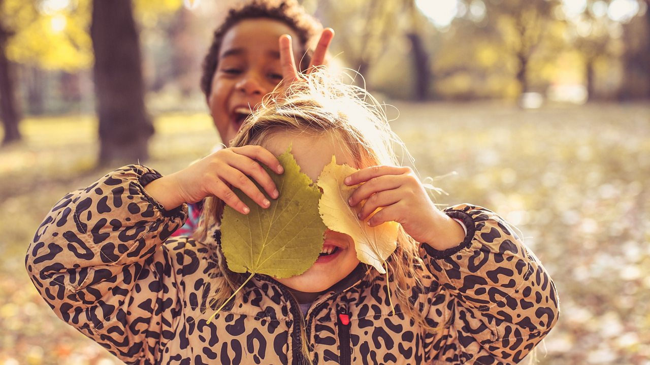 How to turn a walk in the park into a colourful craft activity