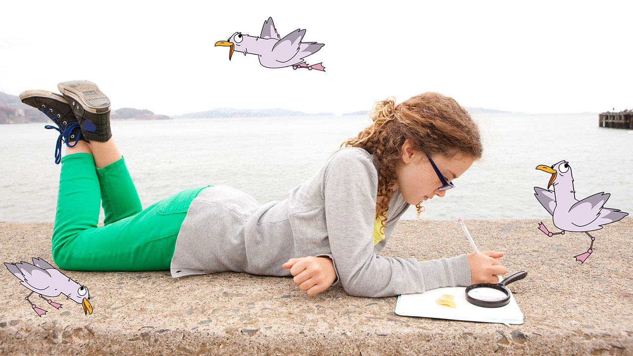 A girl by the sea, thinking of how to record the data she found out