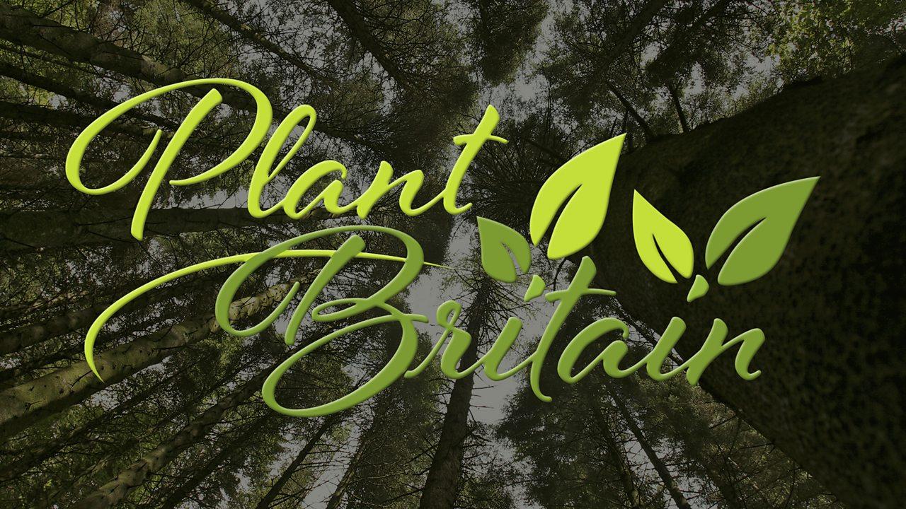 Plant Britain