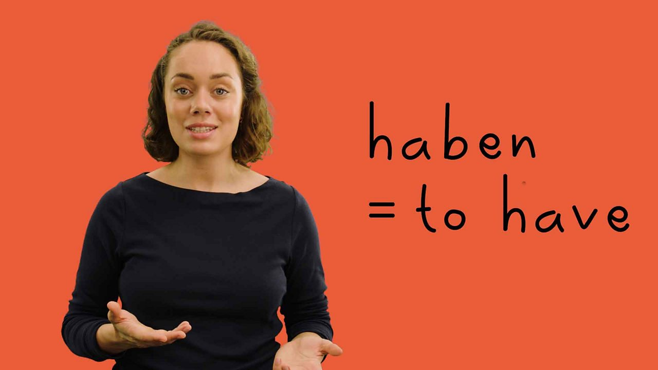 How to use the verb 'to have' in German