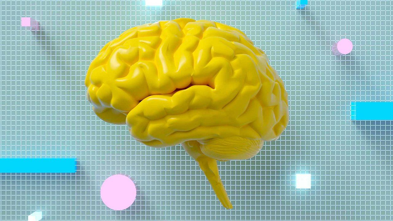 Revision: mind map essentials