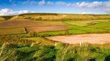 Fields in the rural landscape