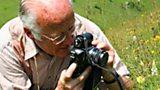 DAVID LANG :: ORCHID EXPERT