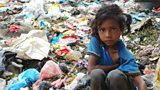 Dilmaya on the waste site