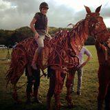 War Horse comes home