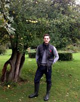 Matt's orchard