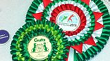 1005 Rosettes for Crufts