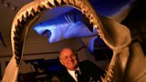 Shark attack survivor Rodney Fox, fifty years after being mauled by a Great White
