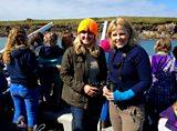 Scilly seabirds
