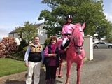 The Pink Horse of the North